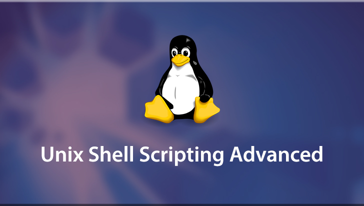 Unix Shell Scripting Advanced