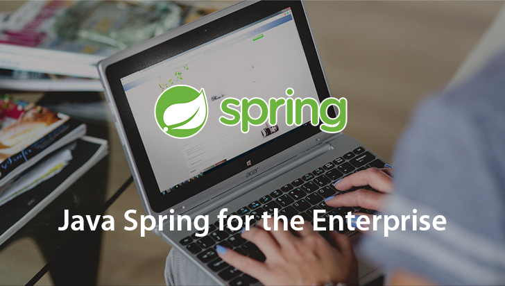 Java Spring for the Enterprise