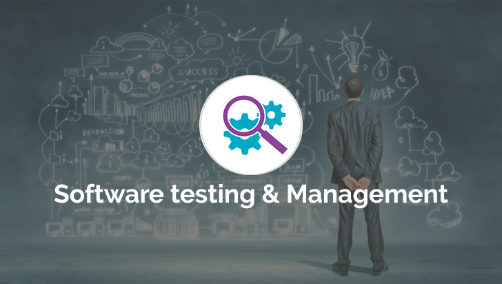 Software Testing and Management