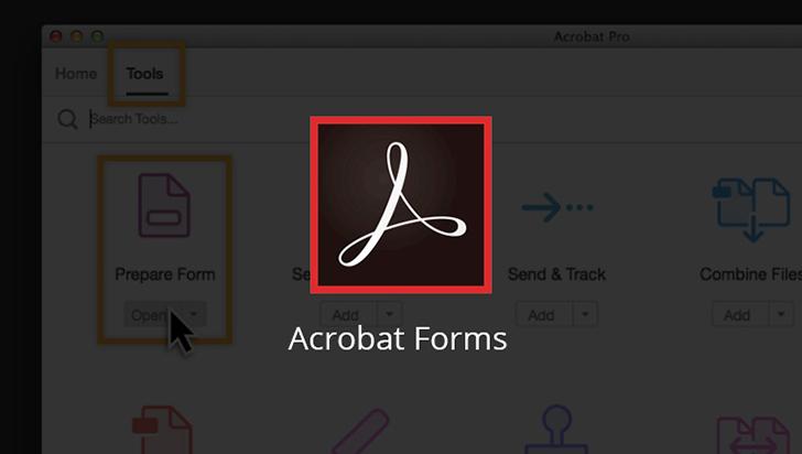 Acrobat Forms