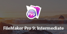 FileMaker Pro 8: Intermediate