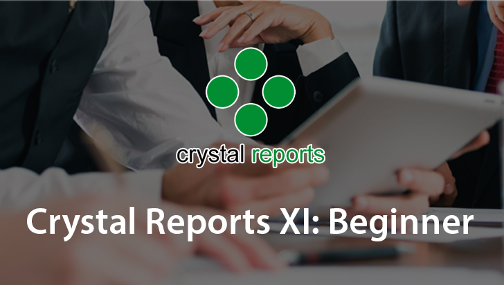 Crystal Reports XI: Beginner