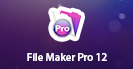 FileMaker Pro 12: Beginner